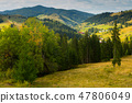 Illustration of scenic Karpaty mountains 47806049