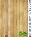 背景 - 牆壁 - 木五穀 - 新綠色 - 葉子 - 分支 - 瓢蟲 - 春天 - 夏天 47810990