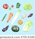 Vegetable illustration blue 47814280