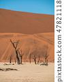 나미비아 나미 브 사막 죽음의 늪 죽음 프레이 47821118