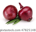 Red Onion and Fresh Scallion 47825148