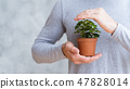 save world protect nature plant mans hands 47828014