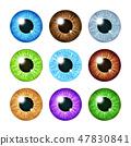 Realistic multi colored eyeball iris pupils set 47830841
