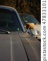 老式汽車 47833101