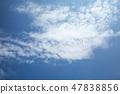 푸른 하늘 47838856