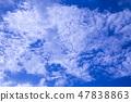 푸른 하늘 47838863