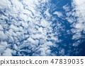 푸른 하늘 47839035