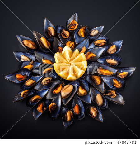 Steamed mussels. 47843781
