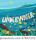 Underwater world with coral reef 47847252