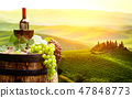 Red wine with barrel on vineyard in green Tuscany, 47848773