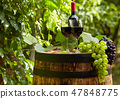 Red wine with barrel on vineyard in green Tuscany, 47848775