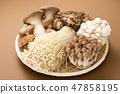 蘑菇集合 47858195