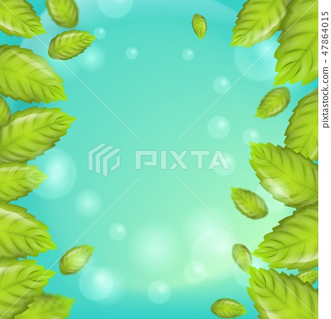 Realistic illustration vertical mint leaves 3d 47864015