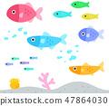 화려한 물고기 47864030