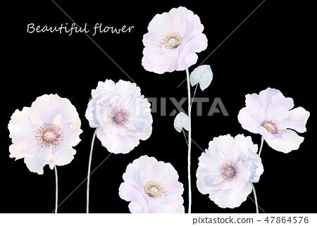 優雅的水彩玫瑰花和牡丹花 47864576
