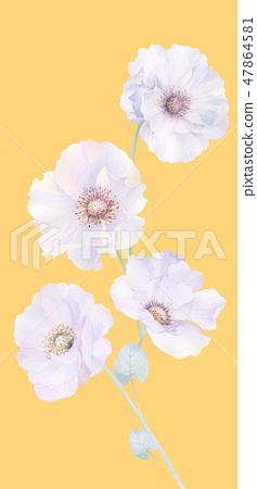 優雅的水彩玫瑰花和牡丹花 47864581