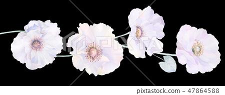 優雅的水彩玫瑰花和牡丹花 47864588