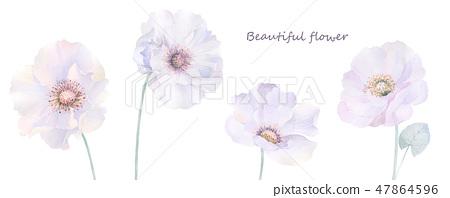 優雅的水彩玫瑰花和牡丹花 47864596