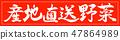 書法:蔬菜直接送到這個地方 - 僅設計Vermillion-01 Vermillion 47864989