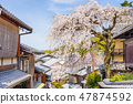 Kyoto, Japan with cherry blossoms 47874592