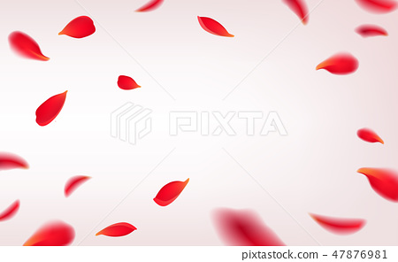 Falling red rose petals isolated on white background. Vector illustration with beauty roses petals 47876981