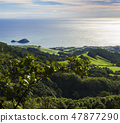 Aerial view of lush green grass hills with fields and pastures and famous volcanic islet near the 47877290