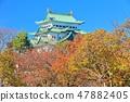 【아이치】 단풍과 나고야 성 대천 47882405