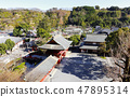 yutoku Inari Shrine is located in Kashima City 47895314