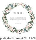 银莲花 框架 边框 47901328