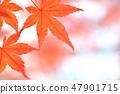 Momiji的秋葉 47901715