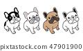 개, 강아지, 벡터 47901900