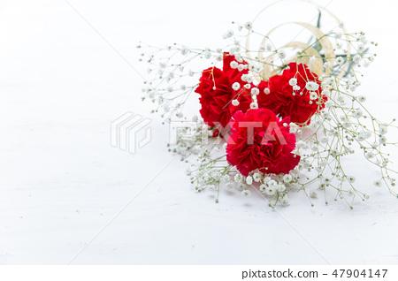 紅色康乃馨禮物/母親節·花束 47904147