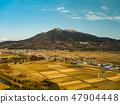 Sakuragawa ยอดเขาทซึคุบะ 47904448