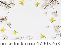 Floral frame, web banner made of white prunus and yellow forsythia blossoms isolated on wooden table 47905263