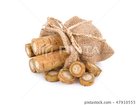 fresh burdock root or Gobo in sack on white 47910555