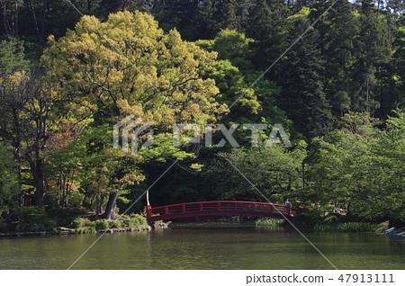 At Suwon Park in Fresh Green (Suzaka City) 47913111