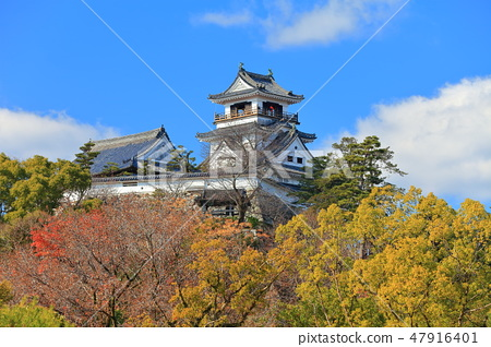 [Kochi Prefecture] Kochi Castle Tower under sunny weather 47916401