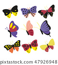 butterfly character vector design 47926948