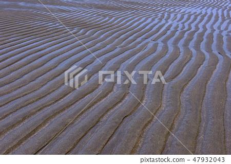 桃園觀新藻礁生態系野生動物保護區沙灘 47932043