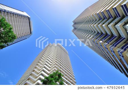 미나토 미라이 신록과 고층 아파트 군 47932645