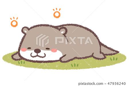 An otter nap 47936240