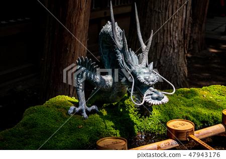 Suwa Taisha of the dragon of Suwa Taisha 47943176