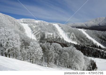 Alts Bandai  -  Black Valley 1,2,4 47945796
