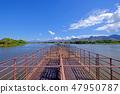Cattle pontoon boat on Rio Paraguay river, Porto Jofre, Pantanal, Mato Grosso, Brazil, South America 47950787