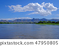 Rio Paraguay River between Corumba and Porto Jofre, Pantanal landscape, Mato Grosso do Sul, Brazil 47950805