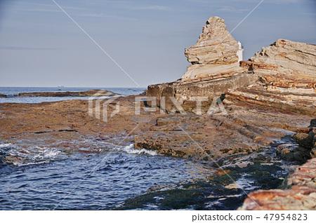 Lion rock of Chita peninsula noma 47954823