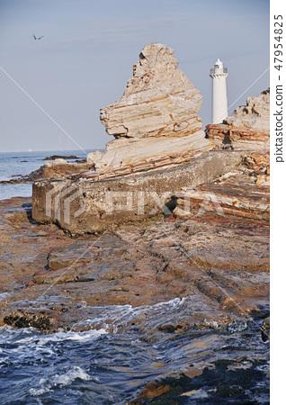 Lion rock of Chita peninsula noma 47954825