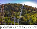 Park City chair lift between trees summer 47955170