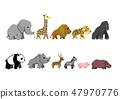 面向右侧的动物 47970776