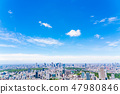 【도쿄】 도시 풍경 47980846